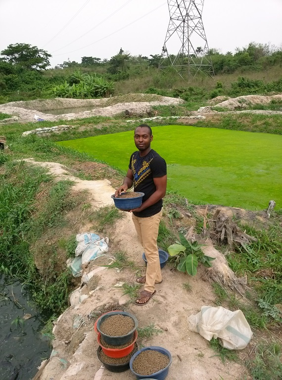 Bamidele at farm